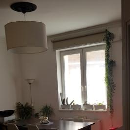 Eladó  téglalakás (Budapest, VIII. kerület) 48 M  Ft +ÁFA