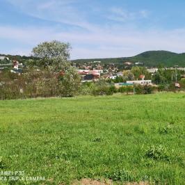 Eladó  telek (Budakeszi, Darányi) 79 M  Ft