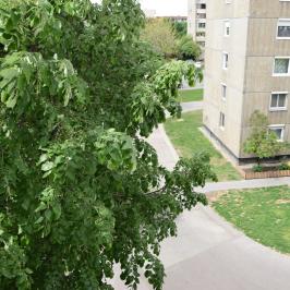 Eladó  panellakás (Budapest, XX. kerület) 22,9 M  Ft