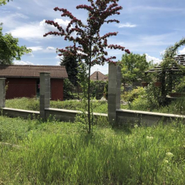 Eladó  családi ház (Ecser) 39,9 M  Ft