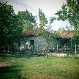 Eladó  családi ház (<span class='notranslate'>Dunavarsány</span>, <span class='notranslate'>Nagyvarsány</span>) 23.5 M   <span class='notranslate'>Ft</span>