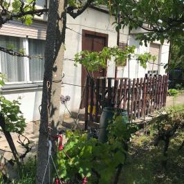 Eladó  telek (Budapest, XXI. kerület) 44,5 M  Ft