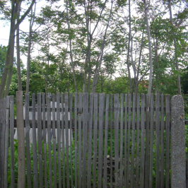 Eladó  családi ház (Napkor) 6,7 M  Ft