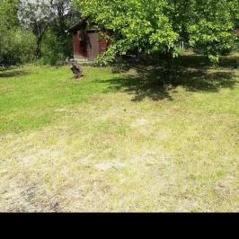 Eladó  telek (Budakeszi, Nagyszénászug) 12,5 M  Ft