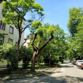 Eladó  téglalakás (Budapest, XIV. kerület) 33,5 M  Ft