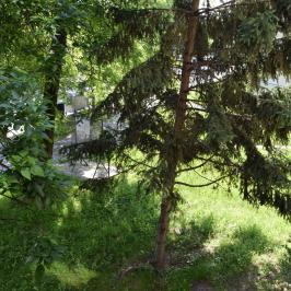 Eladó  téglalakás (Budapest, XXI. kerület) 25,4 M  Ft