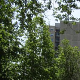Eladó  családi ház (Nyíregyháza) 38,5 M  Ft