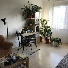 Eladó  panellakás (Budapest, XV. kerület) 24,9 M  Ft
