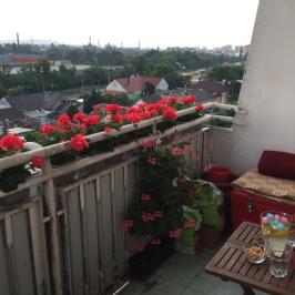 Eladó  panellakás (Budapest, XXI. kerület) 32,9 M  Ft