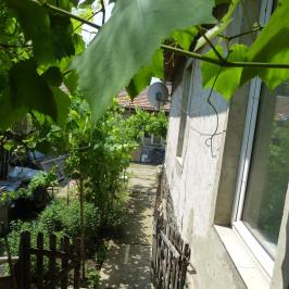 Eladó  családi ház (Eger, Lajosváros) 32 M  Ft