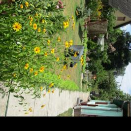 Eladó  családi ház (Sződliget) 24,9 M  Ft