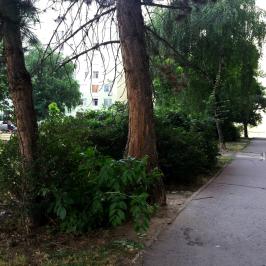 Eladó  panellakás (Eger, Felsőváros) 16,6 M  Ft