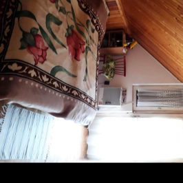 Eladó  családi ház (Ráckeve, Peregi Duna sor) 25 M  Ft