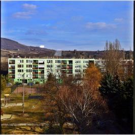 Kiadó  panellakás (Eger, Felsőváros) 110 E  Ft/hó