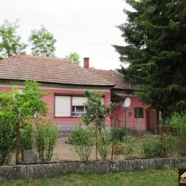 Eladó  családi ház (<span class='notranslate'>Hernád</span>, <span class='notranslate'></span>) 11.5 M   <span class='notranslate'>Ft</span>