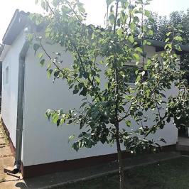 Eladó  családi ház (Délegyháza) 15,5 M  Ft