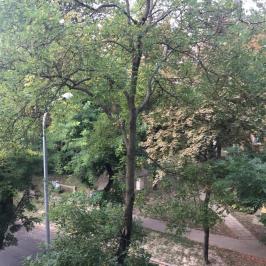 Eladó  téglalakás (Budapest, XI. kerület) 26,5 M  Ft