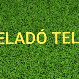 Eladó  telek (<span class='notranslate'>Diósjenő</span>, <span class='notranslate'></span>) 5,2 M   <span class='notranslate'>Ft</span>