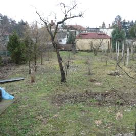 Kiadó  családi ház (Nyíregyháza, Sóstófürdő) 95 E  Ft/hó