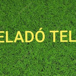 Eladó  telek (<span class='notranslate'>Kisnémedi</span>, <span class='notranslate'></span>) 8,5 M   <span class='notranslate'>Ft</span>
