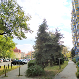 Eladó  panellakás (<span class='notranslate'>Budapest, XIV.  </span>kerület) 36.5 M   <span class='notranslate'>Ft</span>