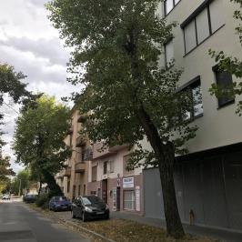 Eladó  téglalakás (<span class='notranslate'>Budapest, XIV.  </span>kerület) 29,9 M   <span class='notranslate'>Ft</span>