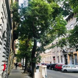 Eladó  téglalakás (<span class='notranslate'>Budapest, VII.  </span>kerület) 26,9 M   <span class='notranslate'>Ft</span>