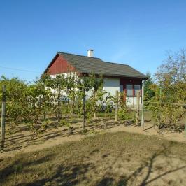 Eladó  mezőgazdasági ingatlan (Nyíregyháza, Sóstóhegy) 7,5 M  Ft