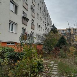 Eladó  panellakás (<span class='notranslate'>Budapest, XI.  </span>kerület) 39.9 M   <span class='notranslate'>Ft</span>