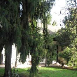 Eladó  családi ház (<span class='notranslate'>Vác</span>, <span class='notranslate'>Belváros</span>) 83,5 M   <span class='notranslate'>Ft</span>