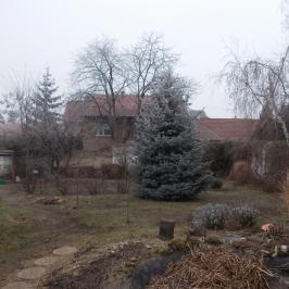 Eladó  családi ház (<span class='notranslate'>Pilisvörösvár</span>, <span class='notranslate'>Központ</span>) 52,2 M   <span class='notranslate'>Ft</span>