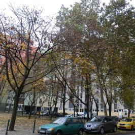 Eladó  panellakás (<span class='notranslate'>Budapest, VIII.  </span>kerület) 27,5 M   <span class='notranslate'>Ft</span>