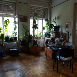 Eladó  téglalakás (<span class='notranslate'>Budapest, VII.  </span>kerület) 44,9 M   <span class='notranslate'>Ft</span>