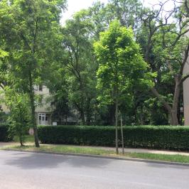 Eladó  téglalakás (<span class='notranslate'>Budapest, X.  </span>kerület) 22 M   <span class='notranslate'>Ft</span>
