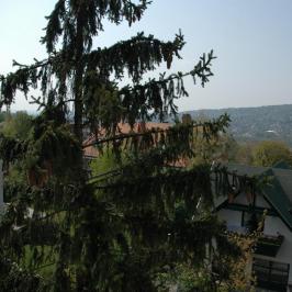 Kiadó  téglalakás (<span class='notranslate'>Budapest, II.  </span>kerület) 430 E   <span class='notranslate'>Ft</span>/hó