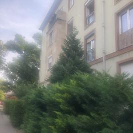 Eladó  téglalakás (<span class='notranslate'>Budapest, XIII.  </span>kerület) 26,9 M   <span class='notranslate'>Ft</span>