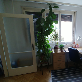 Eladó  panellakás (<span class='notranslate'>Budapest, III.  </span>kerület) 30,9 M   <span class='notranslate'>Ft</span>
