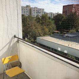Eladó  panellakás (<span class='notranslate'>Budapest, XIV.  </span>kerület) 25 M   <span class='notranslate'>Ft</span>