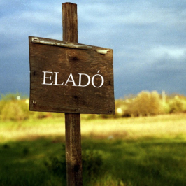 Eladó  telek (<span class='notranslate'>Érd</span>, <span class='notranslate'>Parkváros</span>) 43,9 M   <span class='notranslate'>Ft</span>