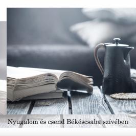 Eladó  téglalakás (<span class='notranslate'>Békéscsaba</span>, <span class='notranslate'>Békéscsaba-Belváros</span>) 110 M   <span class='notranslate'>Ft</span>