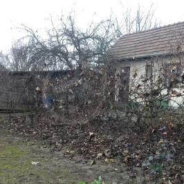 Eladó  családi ház (<span class='notranslate'>Sajószentpéter</span>, <span class='notranslate'></span>) 5,99 M   <span class='notranslate'>Ft</span>