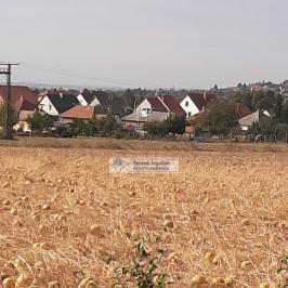 Eladó  mezőgazdasági ingatlan (<span class='notranslate'>Szerencs</span>, <span class='notranslate'></span>) 5,6 M   <span class='notranslate'>Ft</span>