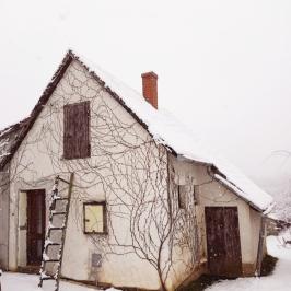 Eladó  családi ház (<span class='notranslate'>Veszprém</span>, <span class='notranslate'>Csatárhegy</span>) 13,9 M   <span class='notranslate'>Ft</span>