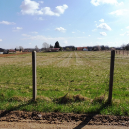 Eladó  mezőgazdasági ingatlan (<span class='notranslate'>Nyíregyháza</span>, <span class='notranslate'>Nyírszőlős</span>) 10 M   <span class='notranslate'>Ft</span>