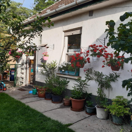 Eladó  családi ház (<span class='notranslate'>Budapest, XX.  </span>kerület) 49,99 M   <span class='notranslate'>Ft</span>
