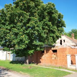 Eladó  családi ház (<span class='notranslate'>Orosháza</span>, <span class='notranslate'>Belváros</span>) 9,5 M   <span class='notranslate'>Ft</span>