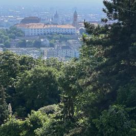 Kiadó  téglalakás (<span class='notranslate'>Budapest, XII.  </span>kerület) 350 E   <span class='notranslate'>Ft</span>/hó