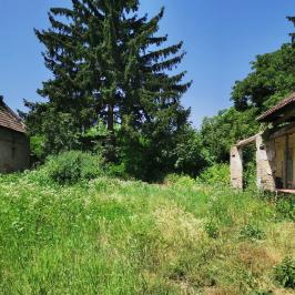 Eladó  családi ház (<span class='notranslate'>Lovászpatona</span>, <span class='notranslate'></span>) 5.2 M   <span class='notranslate'>Ft</span>