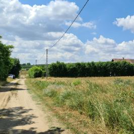 Eladó  mezőgazdasági ingatlan (<span class='notranslate'>Vácegres</span>, <span class='notranslate'></span>) 4.9 M   <span class='notranslate'>Ft</span>
